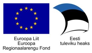 euro-audit